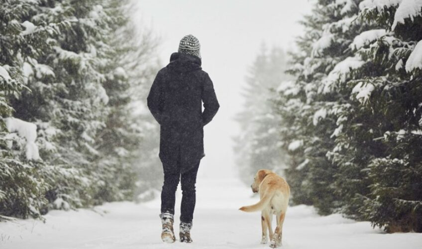 Sve dobre strane šetnje po zimi