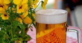 Pandemija smanjila prodaju piva, otkaz dobilo čak 800.000 radnika