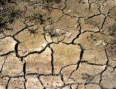 Župan Marko Marušić donio odluku o proglašenju prirodne nepogode zbog suše na području Općine Šandrovac