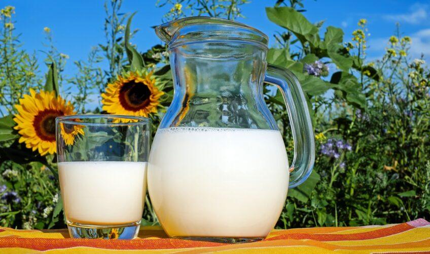 Ukiselilo vam se mlijeko u hladnjaku? Ovo su tri trika kako ga možete iskoristiti